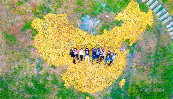 有创意!大学生用两麻袋银杏叶拼出中国地图 获众多网友点赞图片